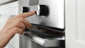 Are you using the oven programs well ?: the best function for each recipe