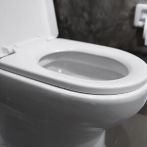 This is the cheapest solution for your clogged toilet