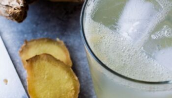 Learn how to make artisan soft drinks at home